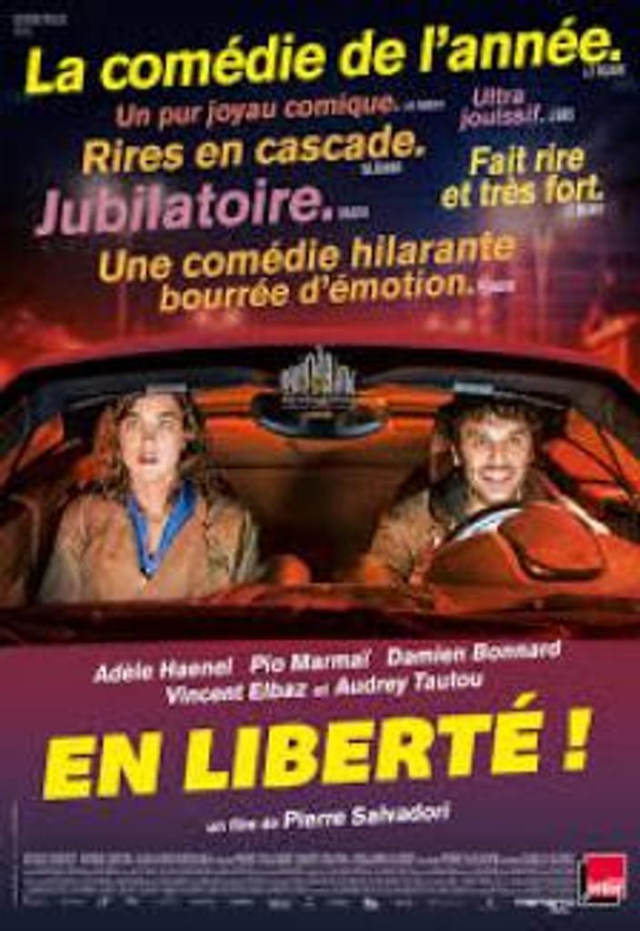 En liberté ! / Pierre Salvadori  