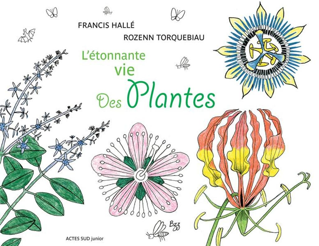 L'étonnante vie des plantes / Francis Hallé, Rozenn Torquebiau | Hallé, Francis (1938-....). Auteur
